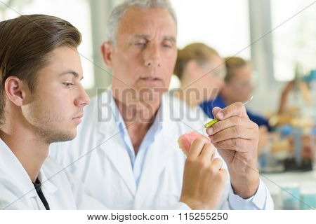 Supervisor helping trainee with dentures