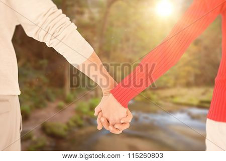 Couple holding hands rear view against rapids flowing along lush forest