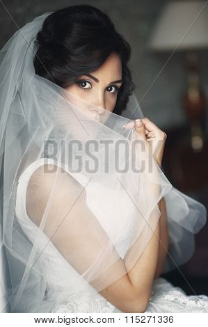 Sexy Relaxed Brunette Bride Hiding Behind Veil Near White Window Closeup