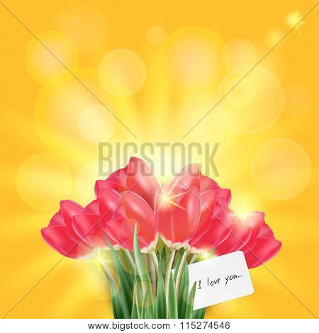 Spring vector set of red tulip