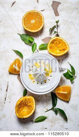 Juicer With Fresh Oranges. The Fresh Orange Juice.