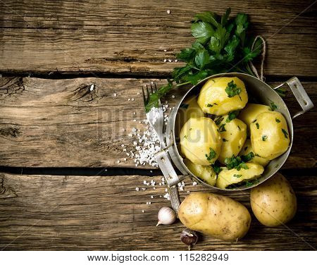 Boiled Potatoes With Herbs And Salt On A Wooden Table . Free Space For Text.