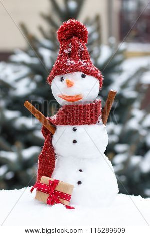 Snowman In Woolen Cap And Scarf With Gift For Valentines Day, Seasonal Concept