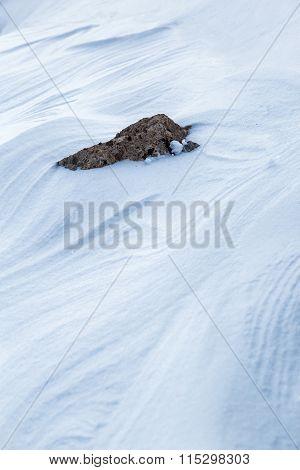 Stone On Fresh Snow