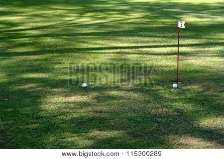 Pair Of Golf Balls Near Hole Flag 5