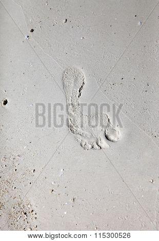 Footprints On A Coral Beach