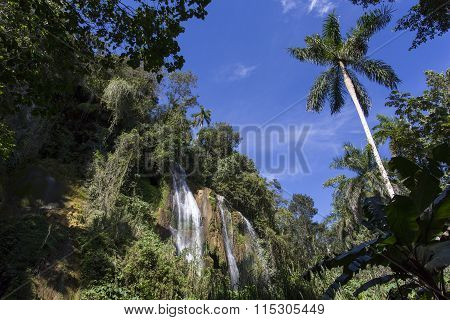 Waterfall In A Lush Rainforest.