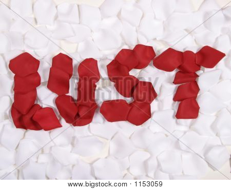 Red Rose Pedals Spelling Lust