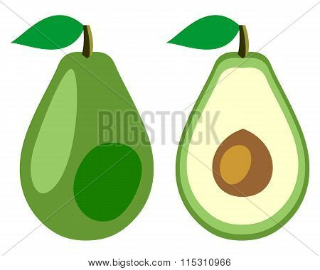 Vector fruits illustration. Detailed icon of avocado whole and half isolated over white background.S