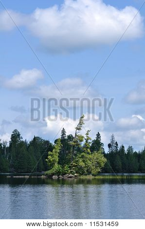 Scenic Island On A Remote Wilderness Lake