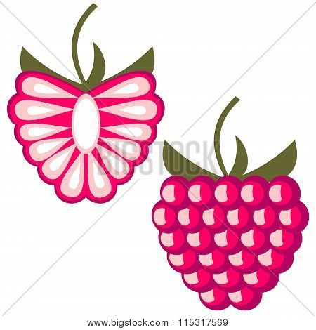 Vector fruits illustration. Detailed icons of raspberry whole and half isolated over white backgroun