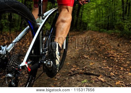 cyclist riding mountain bike on rocky trail