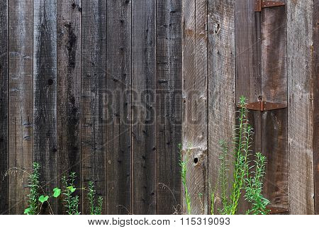 Weathered Rustic Barn Wood Background.
