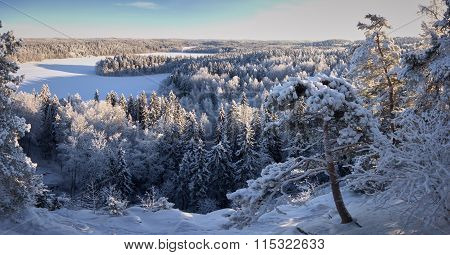 Lake View Panorama In The Winter