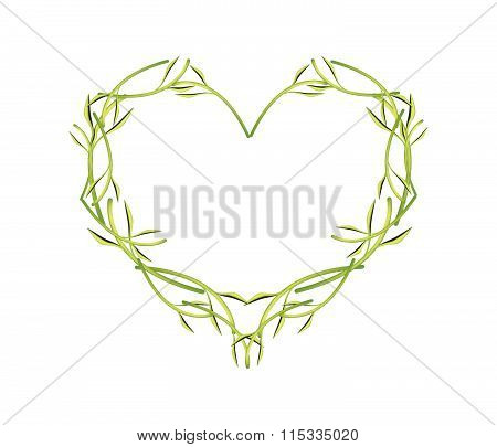 Fresh Green Leaves And Stem In A Heart Shape