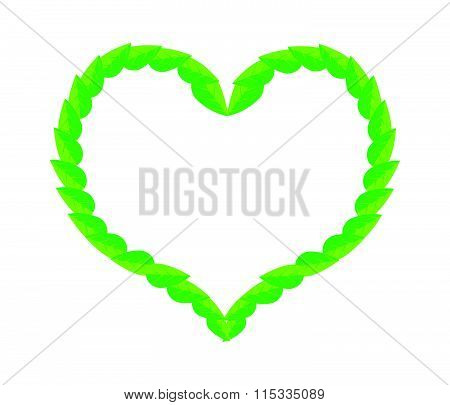Fresh Green Leaves In Beautiful Heart Shape