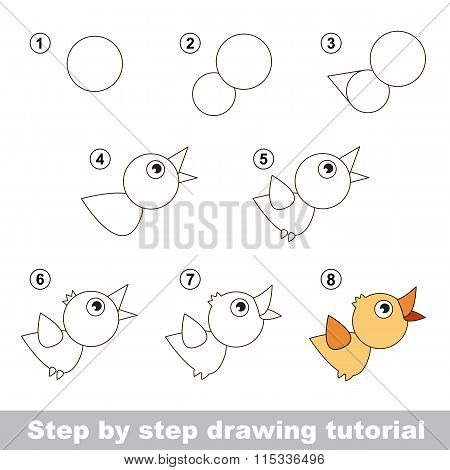 Drawing tutorial. How to draw a Bird