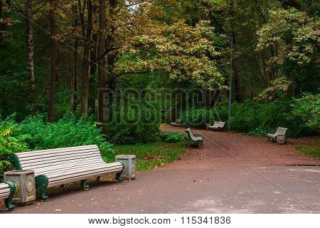 Park alley with benches