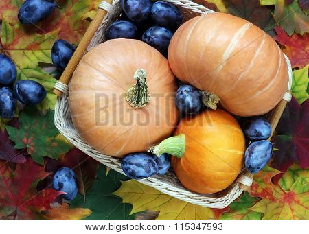 Pumpkins, Plums And Autumn Leaves, Top View.