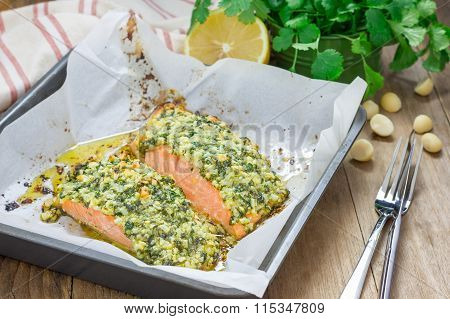 Baked Salmon With Macadamia-cilantro Crust In A Baking Dish