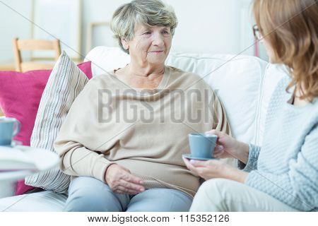 Senior Lady With Social Worker
