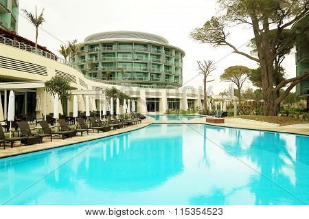 Trees In Swimming Pool.