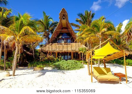 Tranquil Scene Of Ocean Beach, Palm Trees, Beds And Cabin