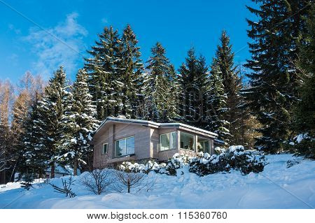 Building With Snow In A Forest