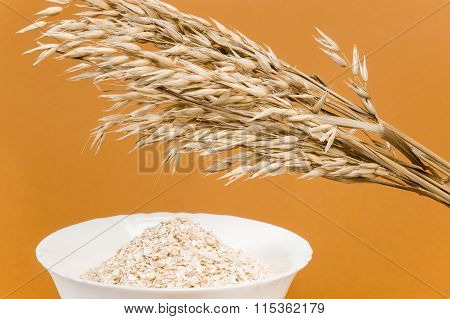 Oat-Ears and Oat Flakes