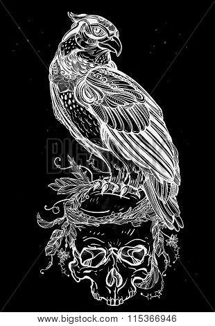 Detailed hand drawn bird of prey on a skull.