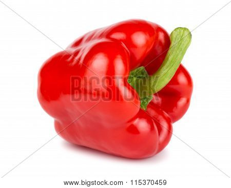 Single Red Sweet Pepper
