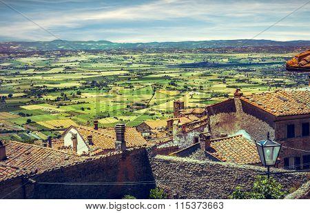 Green Vineyards Of Tuscany