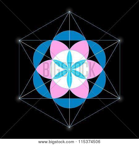 Seed Of Life Mandala