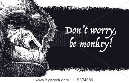 Don't worry, be monkey. Hand drawn. Vector background.
