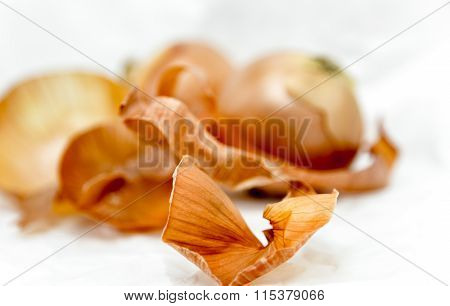 Onion Peel Abstract