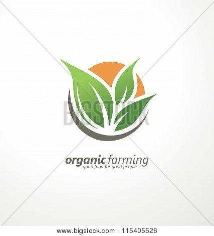 Organic farming logo design idea