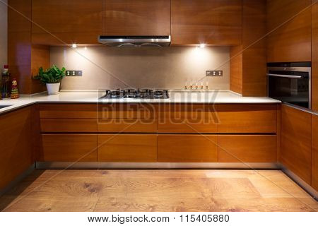 design and appliance in luxury kitchen