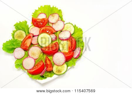 Appetizing Vegetable Salad Isolated