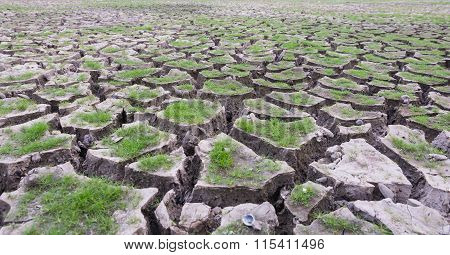 Land With Dry Cracked Mud Ground