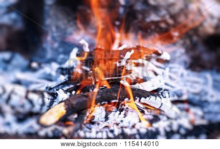 Beautiful burning bonfire in the camp, preparing charcoal for barbecue, natural fuel, abstract natural background
