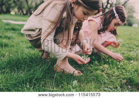 two happy little girlfriends picking flowers in spring garden. Sisters spending time together outdoo