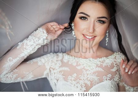 Closeup Shot Of An Elegant, Brunette Bride In Vintage White Dress Posing Under Veil Closeup
