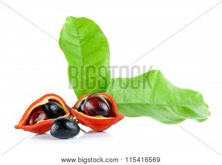 Sweet Chestnuts (sterculia Monosperma) On White Background