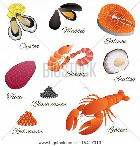 Sea food fish mussel shrimp oyster salmon lobster tuna red black caviar scallop set illustration