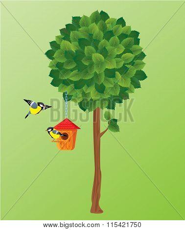 Illustration Of Green Tree, Tit Birds And Nesting Box.
