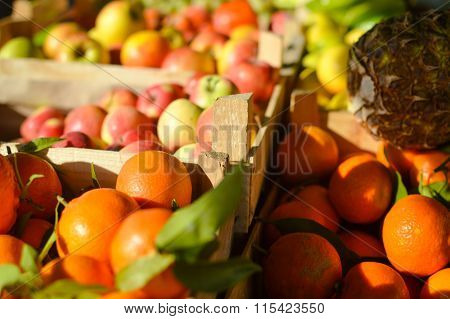 Fresh fruits and vegetables at market in boxes