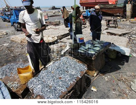 Fish Market In Stone Town