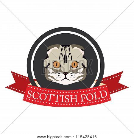 Flat Icon Pedigreed Cat Scottish Fold