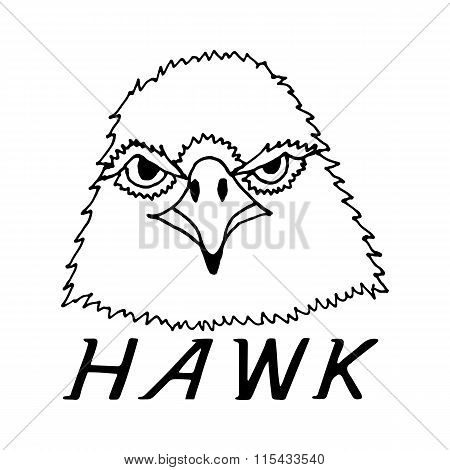 hand draw hawk head