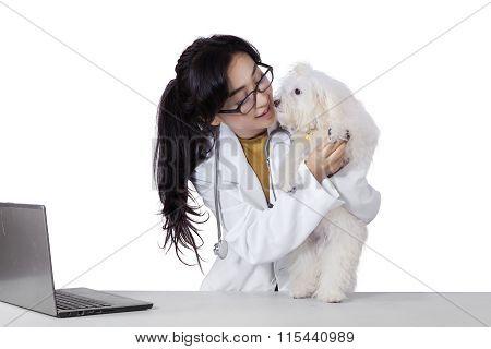 Pretty Veterinarian Checks The Dog Foot